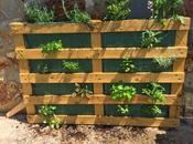 DIY: Jardin Vertical Pallet
