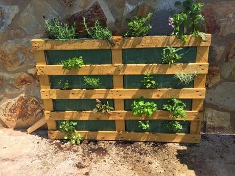 Diy jardin vertical con pallet paperblog for Jardin vertical casero palet