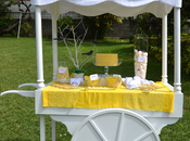 """candy cart"" buffet ideas: boda"