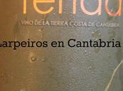Vino Blanco Yenda Riesling 2013