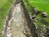 Colapso maya (Cuarta Parte): Colofón, unas ideas generales para concluir