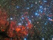 estrellas Jasón Argonautas