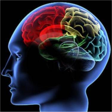 métodos para mejorar la memoria