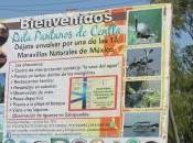 Yumka Pantanos Centla: Encuentro Naturaleza Tabasco
