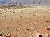 misteriosos círculos Namibia