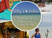 [Why Holbox]: prueba perritos cielo