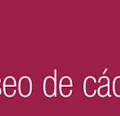 museo-cadiz-banda