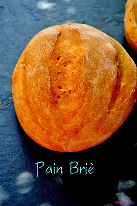 PAIN BRIE (PARA BAKE THE WORLD)