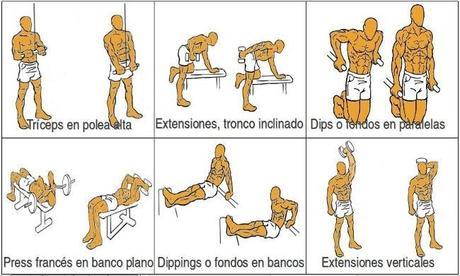 Rutina Para Pecho Y Triceps Volumen Educación Fst 7 Gestation Tus Pectorales Y Tríceps Primera Parte