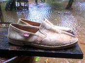 buscan alpargatas marca Festival talla brand sandals size Wanted