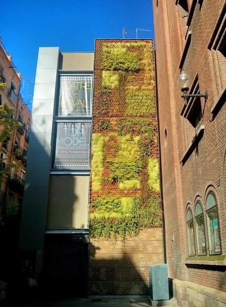 Jard n vertical integrado en el centro hist rico de for Cafe el jardin centro historico