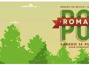 Cartel Romaría 2014 Santiago Compostela