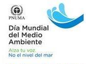 Mundial Medio Ambiente 2014