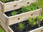 Jardineras Madera: Protagonistas Jardinería Invierno