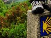 Caminos Santiago Galicia