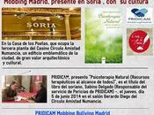 Mobbing Madrid, presente Soria cultura