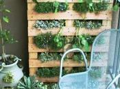 claves para crear propio jardín