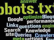 ¿Que Robots txt.?