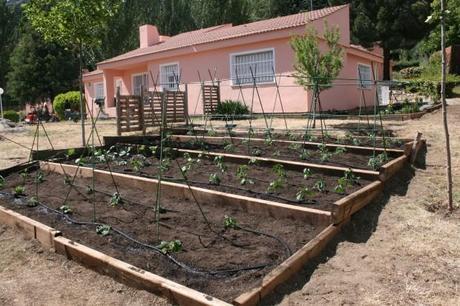 Realizamos con leroy merlin un huerto en aldeas infantiles - Huerto vertical leroy merlin ...
