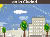 Beneficios árboles ciudad #Infografía #Ambiental #Beneficios