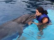 Kardashian nada delfines
