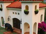 Casas Perros Sorprendentes