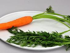 Cómo cultivar zanahorias