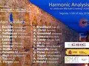 Fefferman Congreso Harmonic Analysis celebrate Michael Cowling's 65th