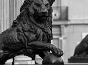Wert quiere devolverle testículos león Congreso