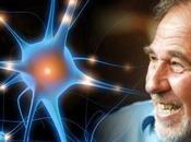 Bruce Lipton: Epigenética biología creencia