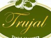 Trujal Almazara envía aceite oliva virgen extra máxima calidad almazara mesa