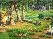 Animales Prehistóricos Plantas