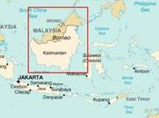 hablamos selva Borneo