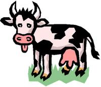 La economía de las dos vacas