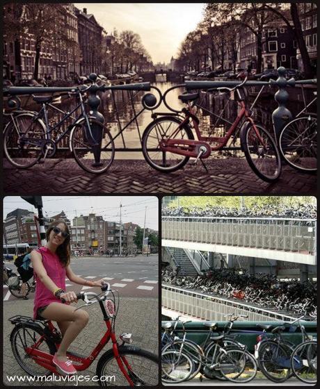 collage bicis
