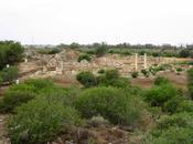 Viaje Chipre 2014 (República Turca Chipre) Salamis