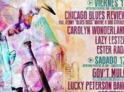 Festival Internacional Blues Bejar 11-12/07/2014