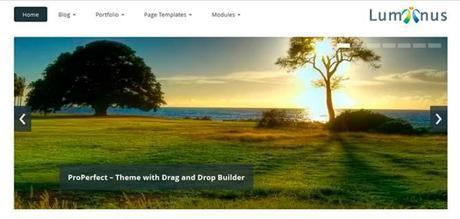 Luminus Responsive Web Theme WordPress
