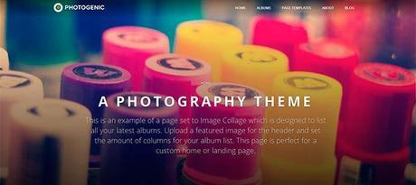 Photogenic Responsive Web Theme WordPress