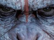 Amanecer Planeta Simios', Matt Reeves. Digna secuela