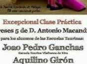 Próximas clases prácticas Escuela Taurina Málaga