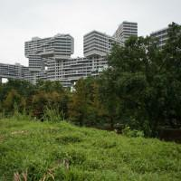 Arch2o-The Interlace by OMA - Ole Scheeren-009