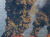 Tierra enfrenta sexta gran extinción. autoextinción