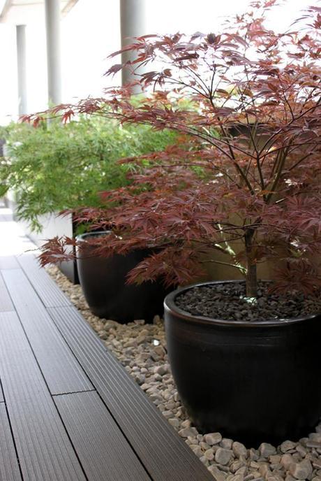 Jard n de dise o para un tico con estilo japon s para un for Jardin estilo japones