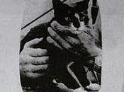 Héroes Inusuales: Simon, Gato enterrado Honores Militares