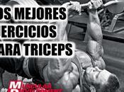 mejores ejercicios triceps para aumentar masa muscular