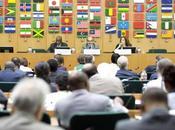 """""""CIN-2″ evento histórico nutrición FAO-OMS."""
