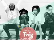 Twig Project, ingeniería para desarrollo