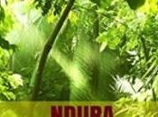 """autor novel Javier Salazar Calle publicado libro """"Ndura. Hijo selva"""" conseguido situarse entre vendidos aventuras Amazon"""