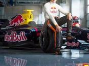 verstappen sera piloto toro rosso 2015 debutara años